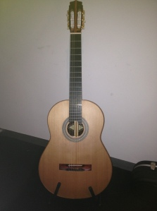 Litchfield C900 Guitar
